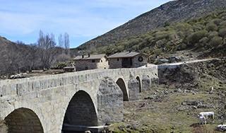 Acceso natural Parque Regional sierra de Gredos.